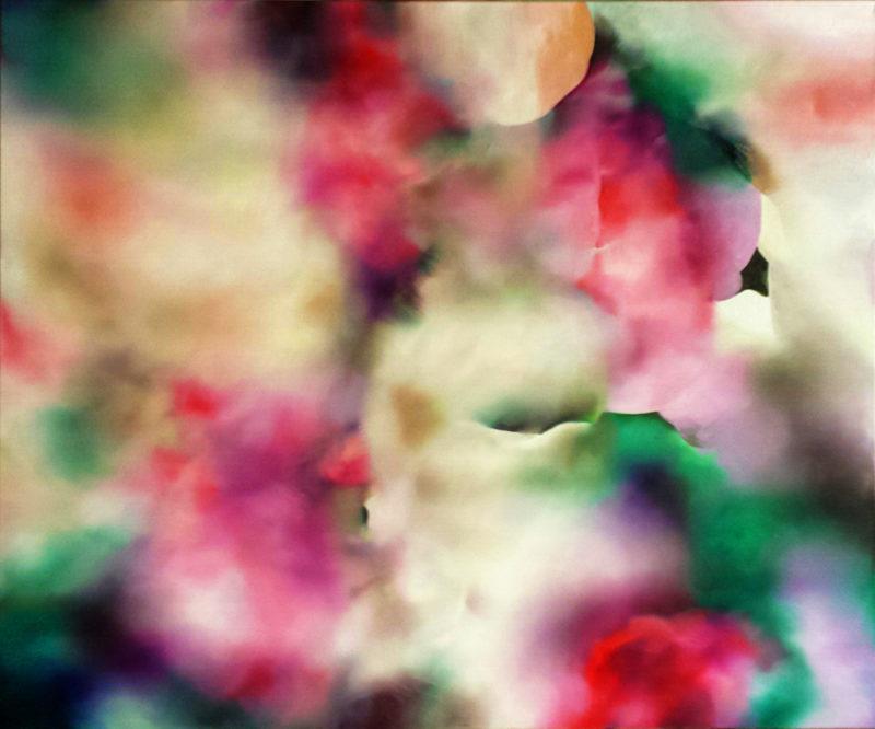 RHEA STANDKE-Melody Pond 800x666